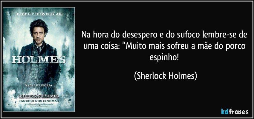 """Na hora do desespero e do sufoco lembre-se de uma coisa: """"Muito mais sofreu a mãe do porco espinho! (Sherlock Holmes)"""