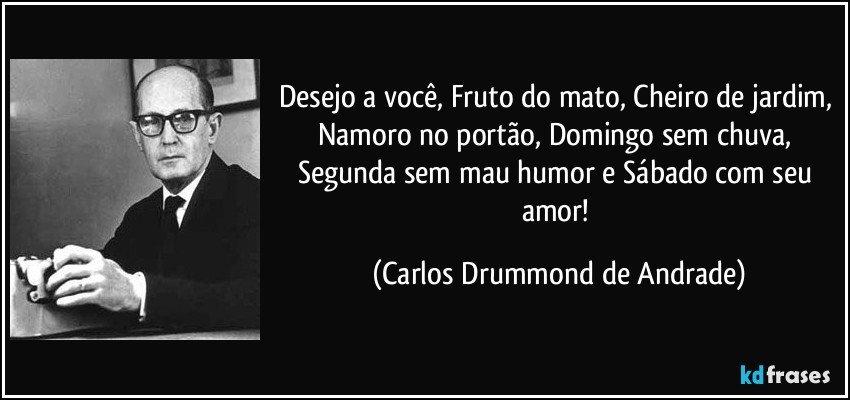 banco de jardim poesia:Mais frases populares de Carlos Drummond de Andrade