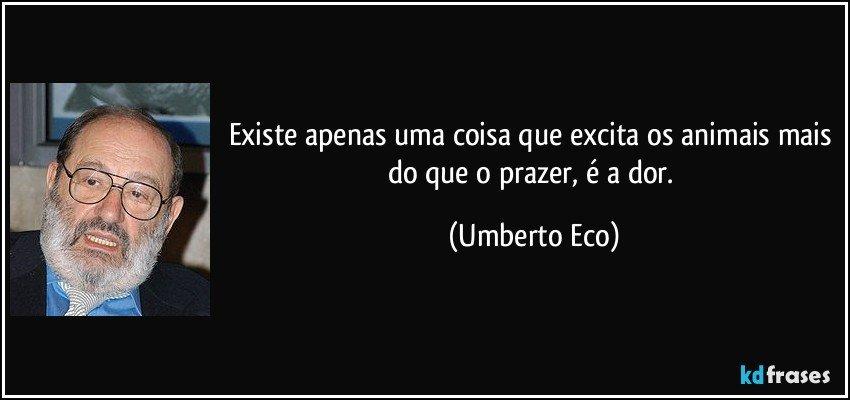 Existe apenas uma coisa que excita os animais mais do que o prazer, é a dor. (Umberto Eco)