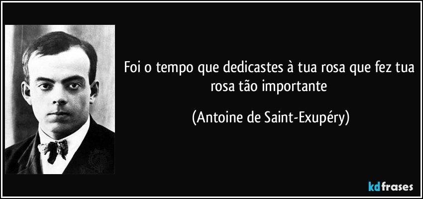 Foi o tempo que dedicastes à tua rosa que fez tua rosa tão importante (Antoine de Saint-Exupéry)