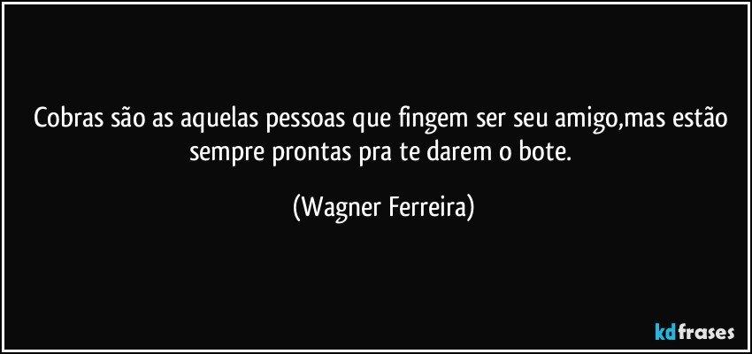 Cobras são as aquelas pessoas que fingem ser seu amigo,mas estão sempre prontas pra te darem o bote. (Wagner Ferreira)