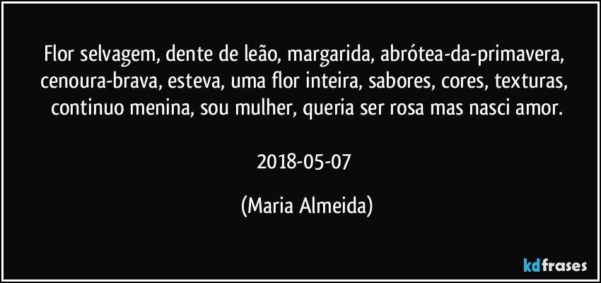 Well-known Flor selvagem, dente de leão, margarida, abrótea-da-primavera,  OS08